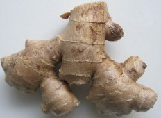 cooking with and storing fresh ginger
