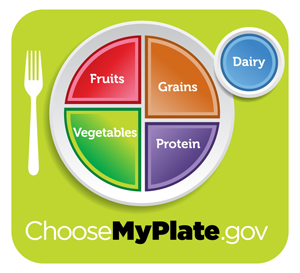 myplate food icon